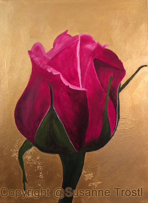 rose-rosa-gold-80x60