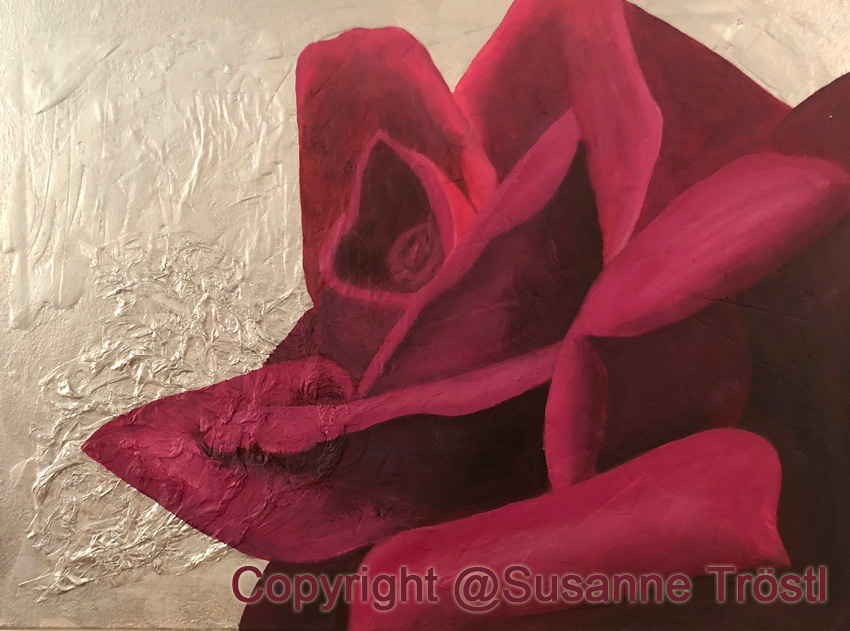 rose-rot-silber-1-80x60